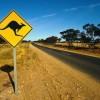 Working Holiday Visa per l'Australia: tutto quello che c'è da sapere