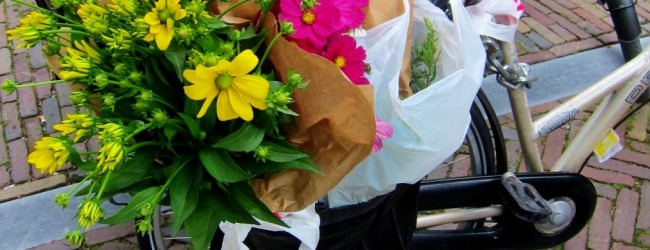 Abbonamenti, supermercati e bici: sopravvivenza quotidiana nei Paesi Bassi