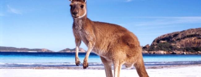 Trasferirsi in Australia con un visto per studenti